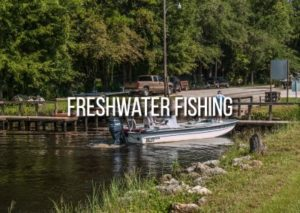 freshwater fishing in florida's rivers